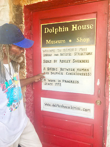 dolphin_house2