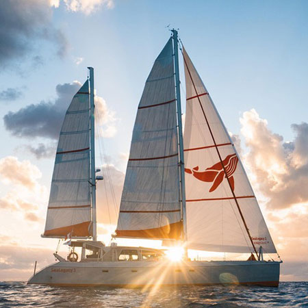 Seal Legacy catamaran on the ocean